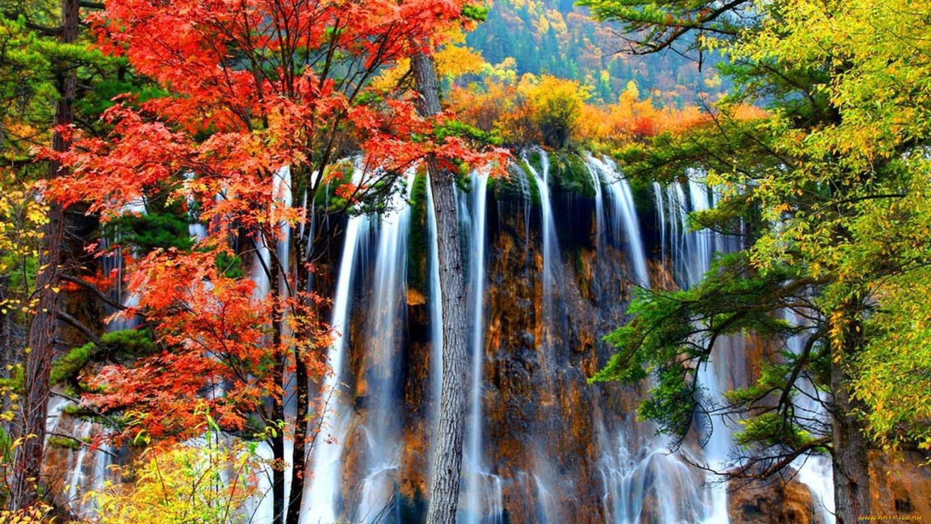 сухогруз привлекательный осень картинки водопады сначала